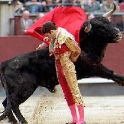 Испанцы отказываются от корриды