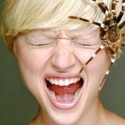 Чего боятся люди: Топ-10 фобий