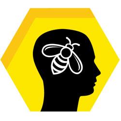Учимся не стареть у пчел