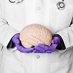 Все ли вы знаете о своем мозге?