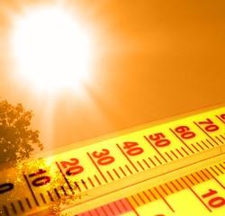 Невиданная жара станет нормой уже через 20 лет