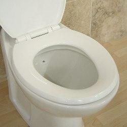 Туалет – одно из самых чистых мест в доме