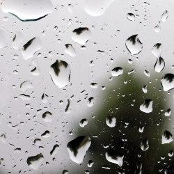 Дождевая вода безопасна для здоровья