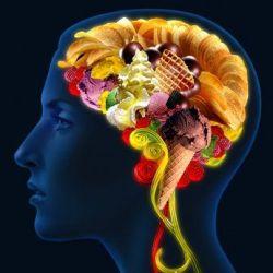 Пища для ума: как она действует?