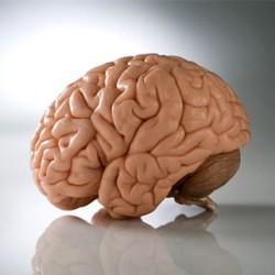 10 уникальных повреждений мозга
