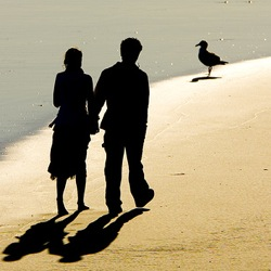 Наука счастливого брака