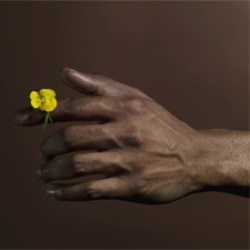 У привлекательных мужчин длинные безымянные пальцы