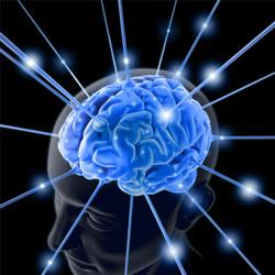 6 самых полезных продуктов для вашего мозга