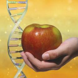 Пищевая геномика – новое научное направление