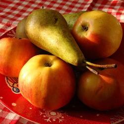 Черника, груши и яблоки уберегут от диабета