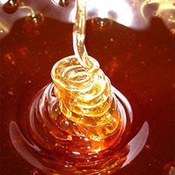 Ученые доказали, что мед обладает лечебными свойствами