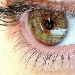 7 способов защитить зрение