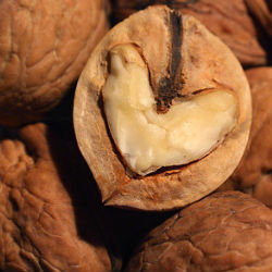 Орехи спасут наши сердца