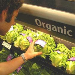 Органическая пища вкуснее и полезнее?