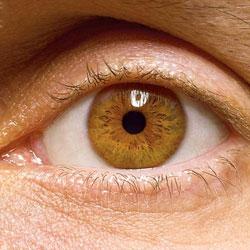 Физическая активность снижает риски глазных болезней