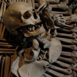 Доисторические люди ели друг друга