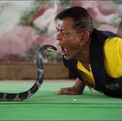Коллекция ручных змей…или как удивить туриста, попавшего в Таиланд