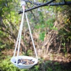Кормушки для птиц: инструкции, фото и оригинальные идеи