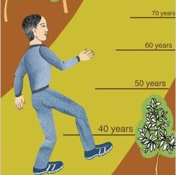 Что можно сделать сейчас, чтобы к ста годам чувствовать себя хорошо