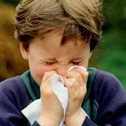 У детей, рожденных осенью, выше риск аллергии