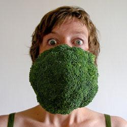 Побочные эффекты вегетарианства
