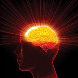 10 способов сохранить свой мозг здоровым