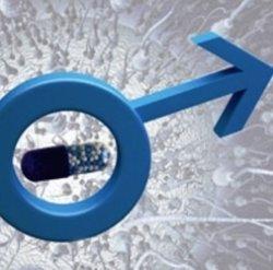 Контрацепция для мужчин…реальность