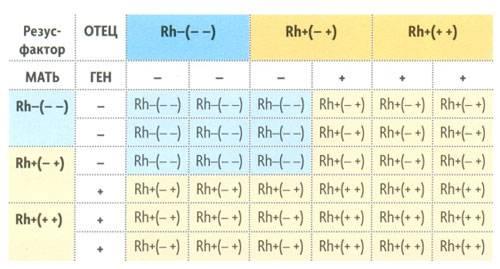 grupa-krovi-6-1.jpg