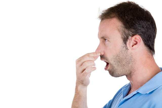 запах изо рта бактерии во рту