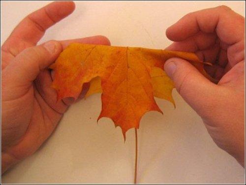 Поделки из листьев или природного материала 65