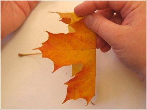 Аппликации из природного материала своими руками на тему осень 22