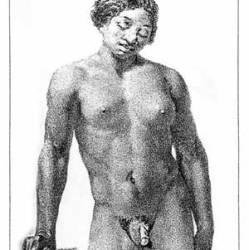 Фото девушек с мужскими половыми органами