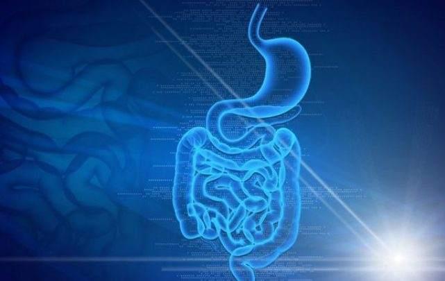 Ученые официально заявляют об открытии нового органа в теле человека.