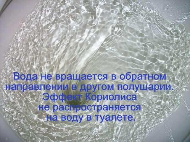 Белая папиллома на анусе фото