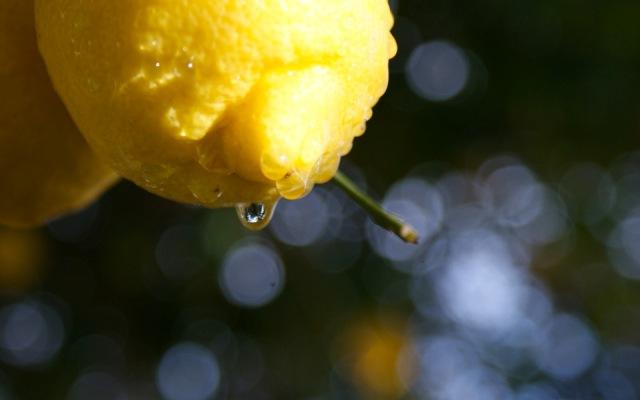 Делать лимонад в домашних условиях