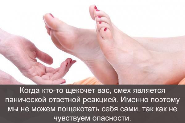 fact-13-1.jpg