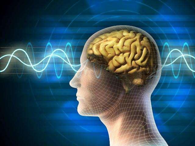 """Ученые нашли """"выключатель"""" сознания в мозге человека"""