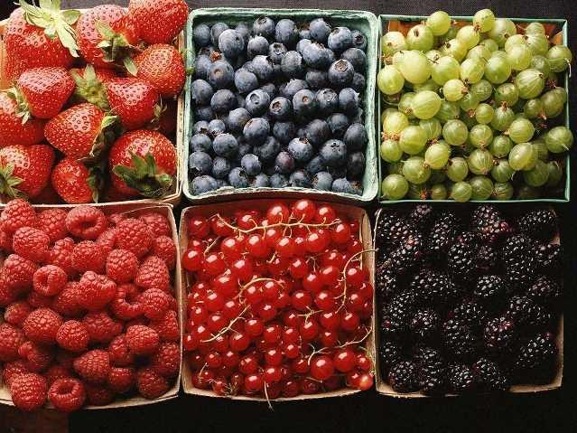 fructi-iagodi-4.jpg