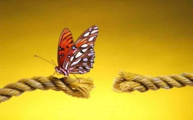Как не потерять себя в трудные времена: жизненные уроки 7ec34e82b7c9ebcdf00022f38ddbd7f3