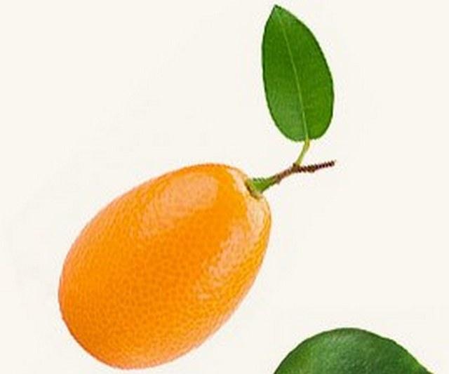 mandarinw6.jpg