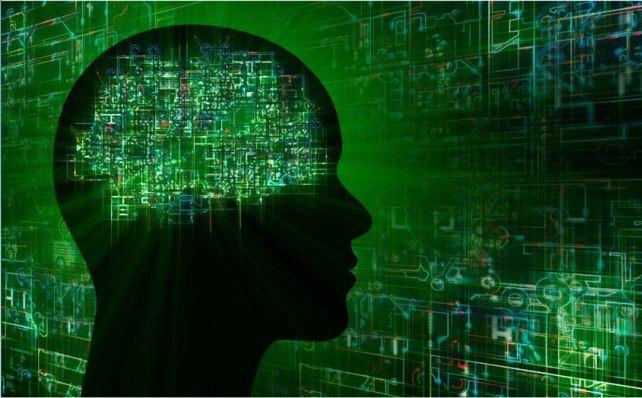 9 причудливых фактов о мозге, о которых раньше вы не слышали