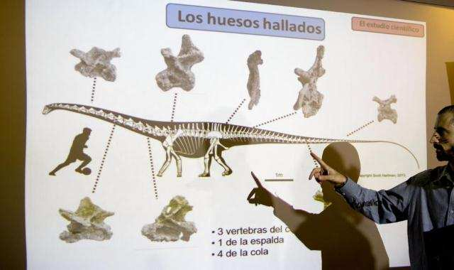 dinozavr-samii-6.jpg