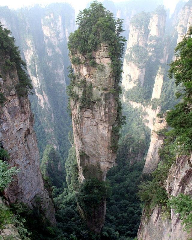 Чудеса природы - Страница 3 96237471c90d42d22fd6269fccbfbbfd