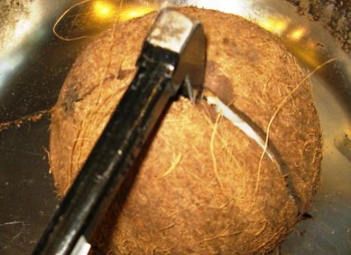 Как открыть кокос в домашних условиях с фото