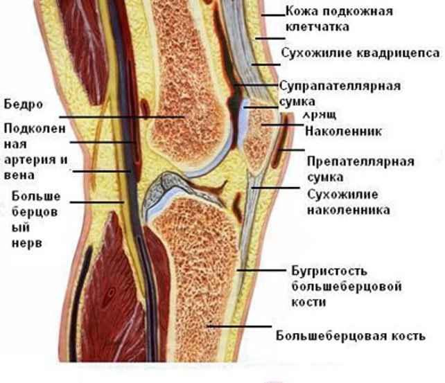резкая боль в правом коленном суставе