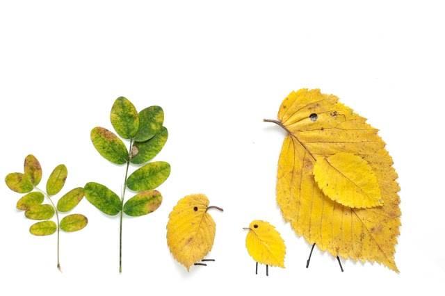 Поделки из листьев лёгкие 70