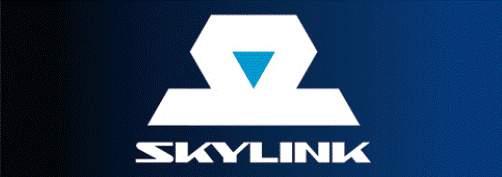 Sky_Link.jpg