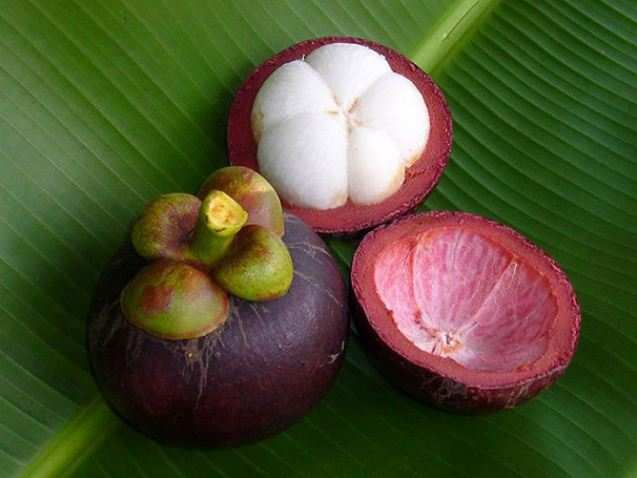 fruct-4.jpg