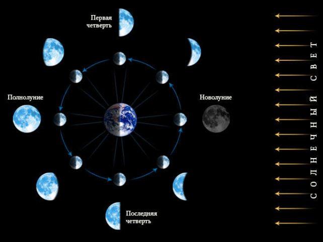 moon_phases1.jpg