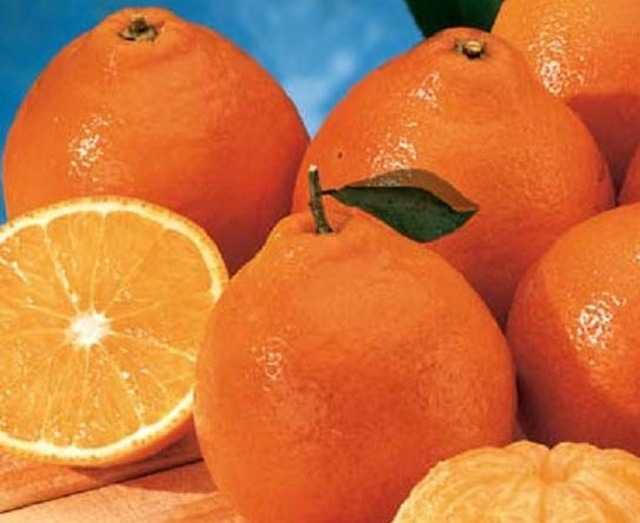 mandarinw3.jpg